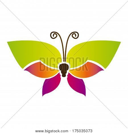 color butterfly with tricolor wings icon, vector illustraction design