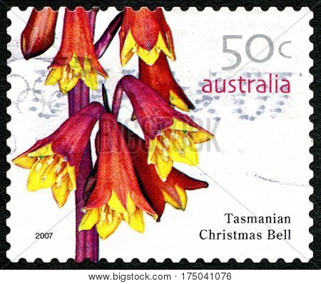 AUSTRALIA - CIRCA 2005: A used postage stamp from Australia depicting an image of a Tasmanian Christmas Bell flowering plant circa 2005.