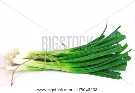 Green onions or Spring onions with rope on white background.