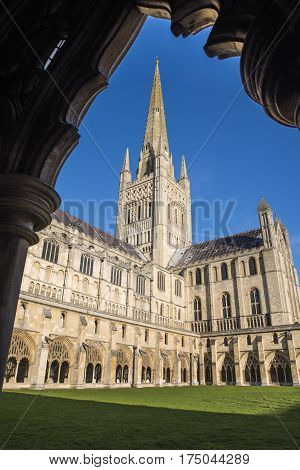 A view from inside the cloisters of Norwich Cathedral in Norwich UK.