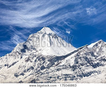 Mount Dhaulagiri view of mount Dhaulagiri from Thorung La pass with beautiful sky round Annapurna circuit trekking trail Nepal poster