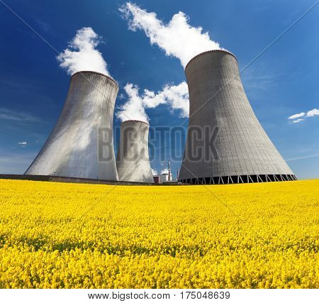 Nuclear power plant Dukovany cooling tower with golden flowering field of rapeseed canola or colza- Czech Republic - two possibility for production of energy