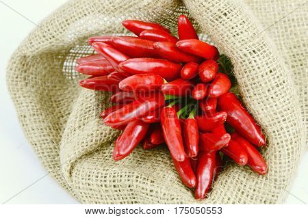 Bird's eye chili or red chili peppers group in sack cloth bag with white background.