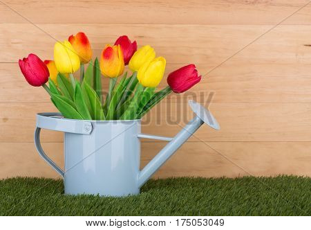 Colorful spring tulips in a watering can with a wood background