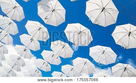 umbrella, sky, parasol, umbrellas, backgrounds textures, texture, blue background, umbrella icon, white texture, blue sky, blue sky with clouds, in a row, rows texture of white umbrellas on a blue sky background