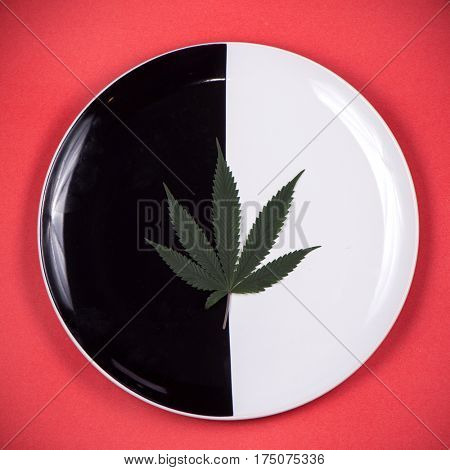 Detail of single cannabis leaf on a dish isolated - medical marijuana infused edibles concept