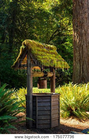 An old moss-covered wishing well at a lodge in Washington's Olympic National Forest
