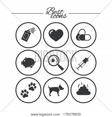 Veterinary, pets icons. Dog paws, syringe and magnifier signs. Pills, heart and feces symbols. Classic simple flat icons. Vector