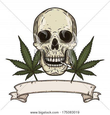 Rastaman skull with cannabis leafs. Vector illustration