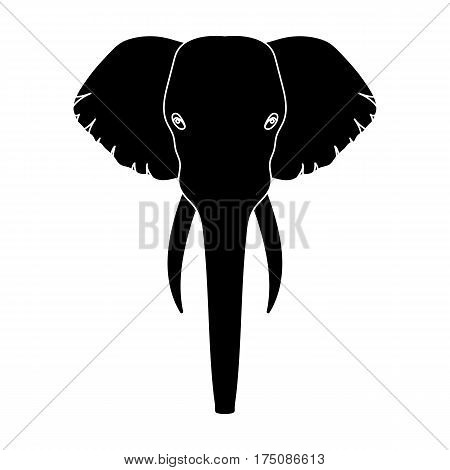Elephant icon in black design isolated on white background. Realistic animals symbol stock vector illustration.