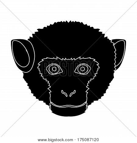 Monkey icon in black design isolated on white background. Realistic animals symbol stock vector illustration.