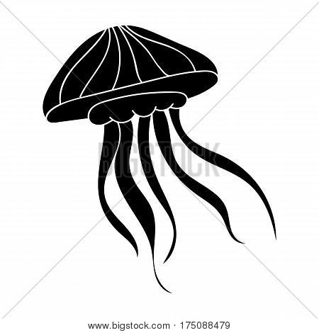 Jelly fish icon in black design isolated on white background. Sea animals symbol stock vector illustration.