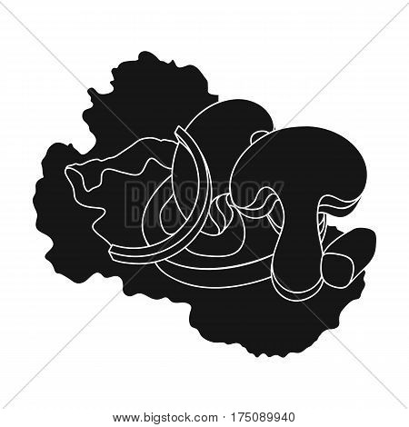 Ecological vegetable salad.Salad for vegetarians.Vegetarian Dishes single icon in black style vector symbol stock web illustration.