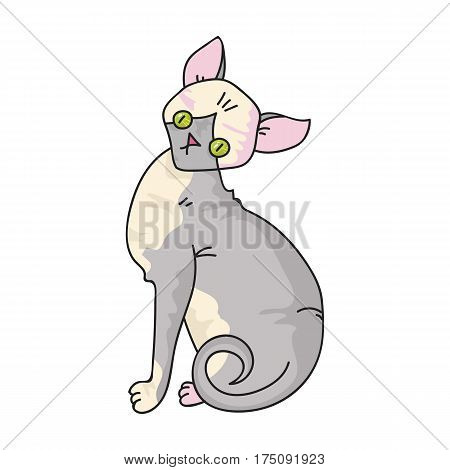 Sphynx icon in cartoon design isolated on white background. Cat breeds symbol stock vector illustration.