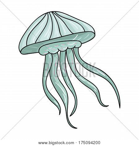 Jelly fish icon in cartoon design isolated on white background. Sea animals symbol stock vector illustration.