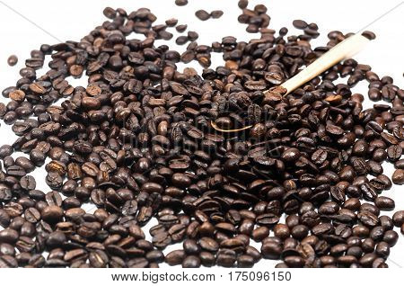 The Coffee Bean Seed In Wooden Spoon On White Background, Coffee, Aroma, Caffeine, Coffee Break, Cof