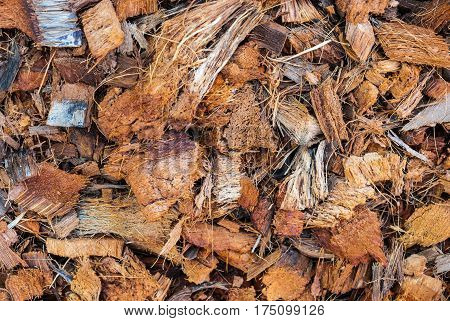 Closeup To Dried Brown Coconut Husk Background