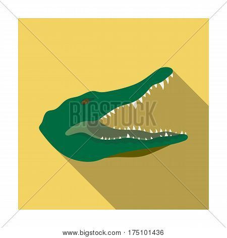 Crocodile icon in flat design isolated on white background. Realistic animals symbol stock vector illustration.