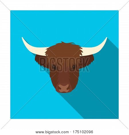 Highland cattle head icon in flat design isolated on white background. Scotland country symbol stock vector illustration.