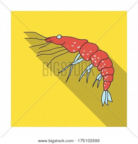 Shrimp icon in flat design isolated on white background. Sea animals symbol stock vector illustration.