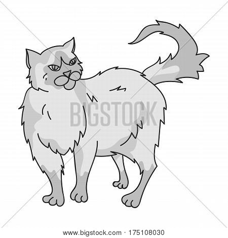 Persian icon in monochrome design isolated on white background. Cat breeds symbol stock vector illustration.