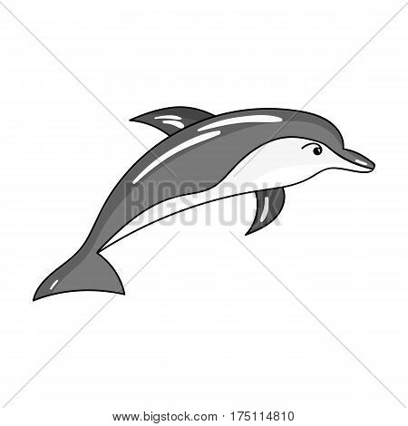 Dolphin icon in monochrome design isolated on white background. Sea animals symbol stock vector illustration.