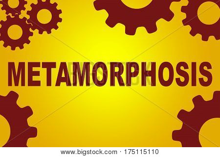 Metamorphosis Formation Concept