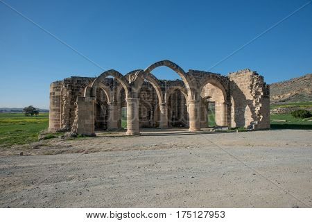 Ruins of Agios Sozomenos temple. Nicosia district. Cyprus