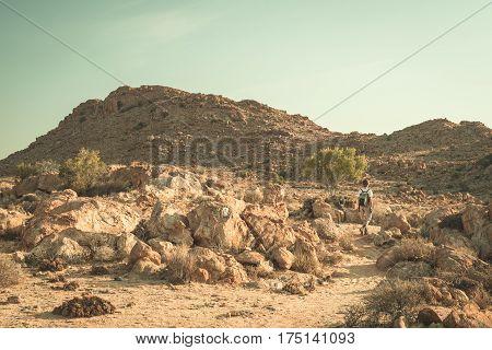 Tourist Walking In The Namib Desert, Namib Naukluft National Park, Namibia. Adventure And Exploratio