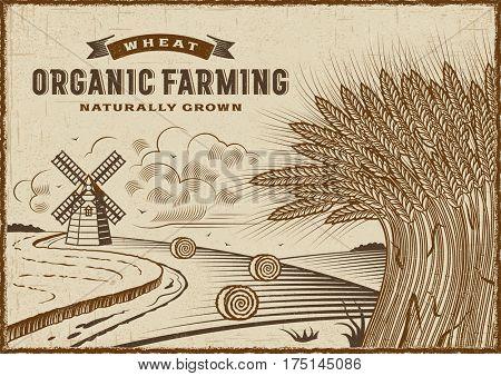 Wheat Organic Farming Landscape