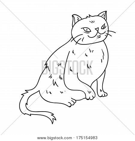 York Chocolate icon in outline design isolated on white background. Cat breeds symbol stock vector illustration.