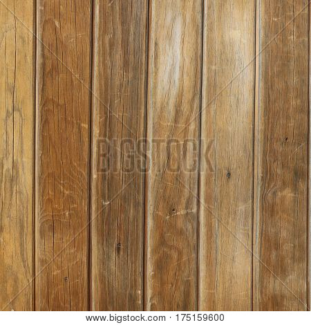 elegant brown wood texture.