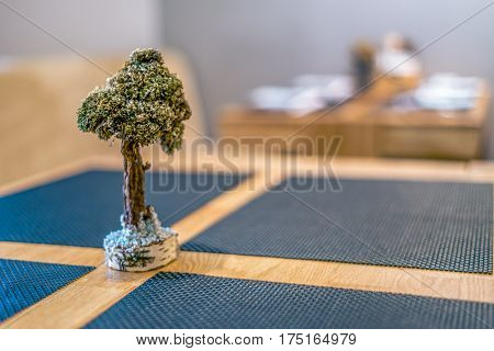 Bonsai on the japan restaurant table. Extreme blurred and shallow depth of field. Vivid splittoned image