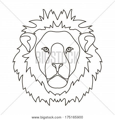 Lion icon in outline design isolated on white background. Realistic animals symbol stock vector illustration.