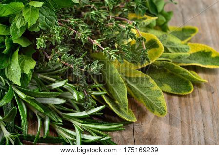 Freshly harvested herbs: rosemary mint sage and thyme over wooden background. Angle view.