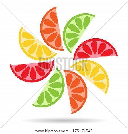 Halves of fresh citrus fruits. Vector illustration icon