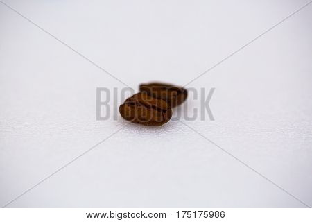 Coffee beans on white background. backdrop arabica