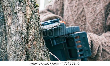 Sawing of apple tree trunk with electric saw. Close-up
