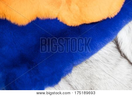 Background of a fur texture of expensive fur-bearing animals close-up