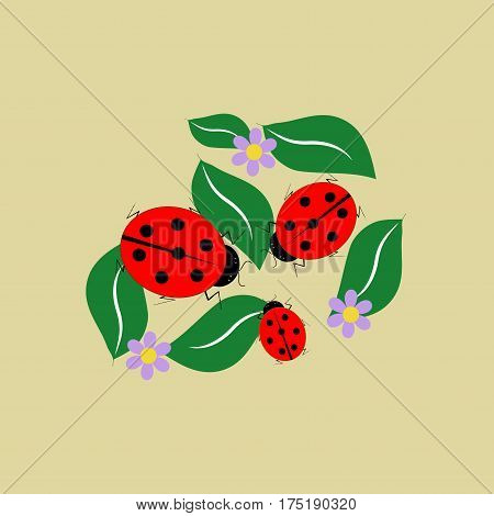 Ladybug isolated. Illustration ladybug on brown background. Cute colorful sign red insect symbol spring summer garden. Template for t shirt apparel card poster Design element Vector illustration