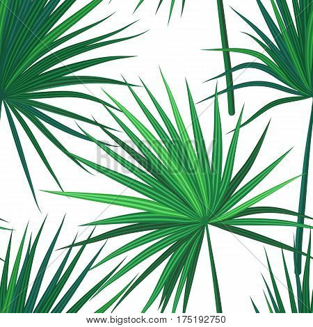 Tropical background with jungle plants. Seamless tropical pattern with green sabal palm leaves. Vector illustration.