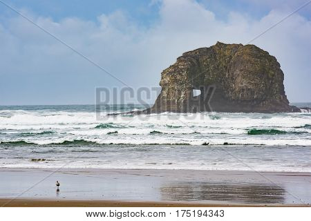 One of Twin Rocks in Rockaway Beach Oregon during overcast misty foggy weather at Pacific ocean
