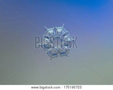 Macro photo of real snowflake: medium size snow crystal of star plate type with glossy, relief surface and almost perfect symmetrical shape, containing interesting pattern with circles in the center, and straight lines with hexagonal symmetry at outer par