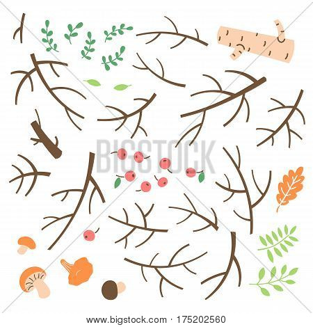 Set of branches, twigs, sticks drawn in a simple cartoon style. Vector illustration