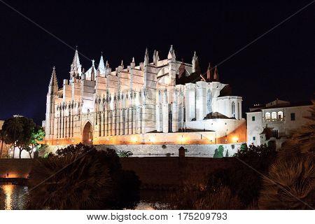 Palma Cathedral at night in Majorca Spain