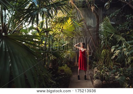 Full length image of Woman in red dress which posing with bamboo stick in greenhouse