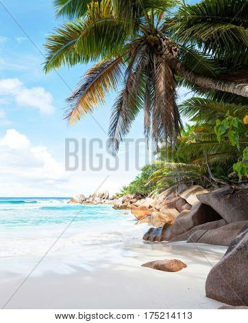 Beautiful tropical  sand beach with granite rocks and coconut palm trees. Beach Anse Cocos, La Digue, Seychelles.