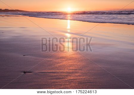 Shallow depth of field sunset with sea and beach and golden sand, at Hellestø beach outside Stavanger, Norway