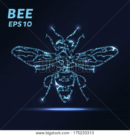 The Bee Consists Of Points, Lines And Triangles. The Polygon Shape In The Form Of A Silhouette Of A
