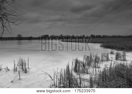 Winter lake in Bila Tserkva. landscape. snowy. nature.